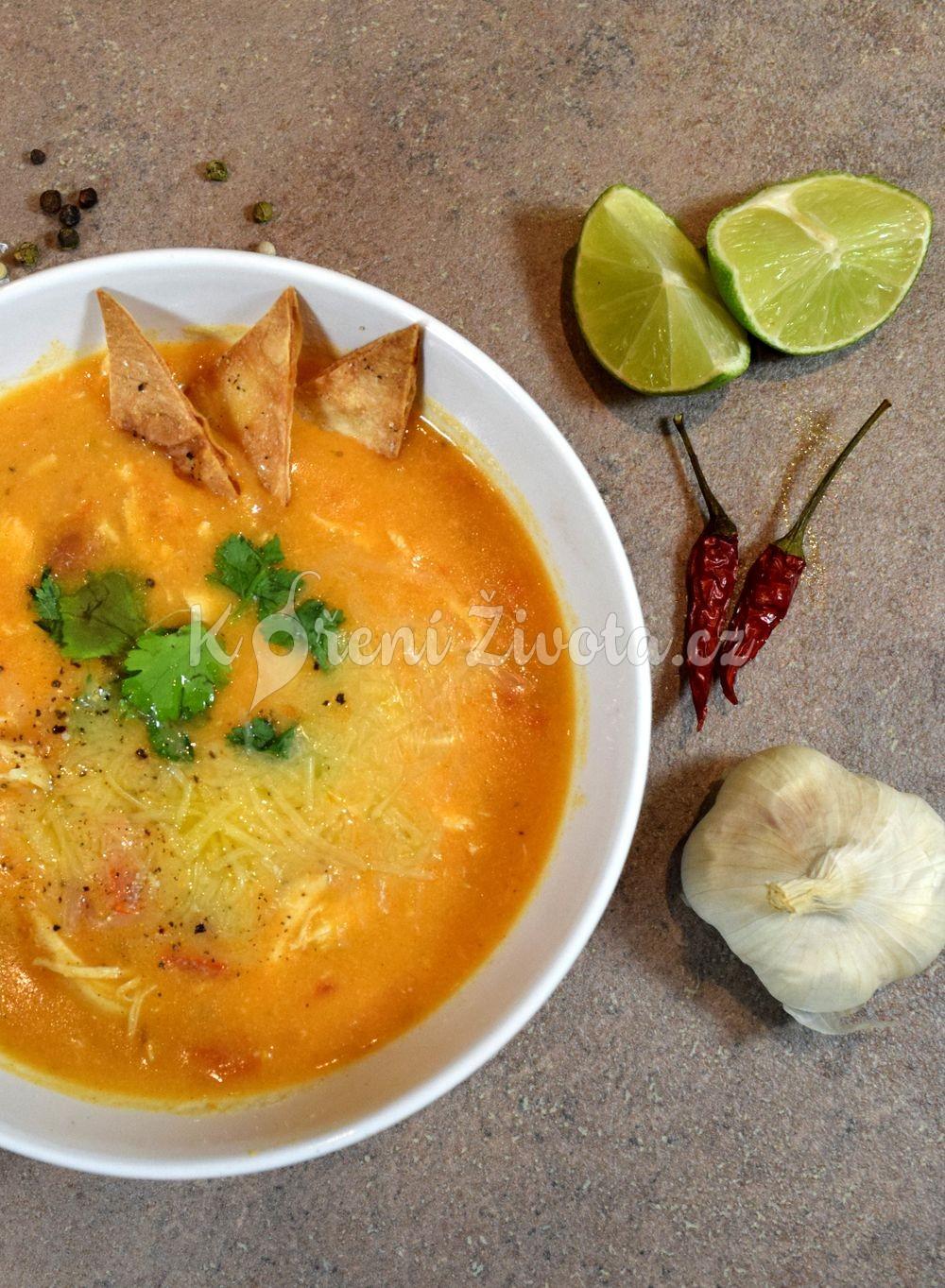 Kuřecí polévka enchiladas s kuřecím masem a chedarem